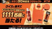 【キャンペーン】ソフト99、「ガラコ誕生30周年記念キャンペーン」第1弾でオリジナルグッズを1111名にプレゼント